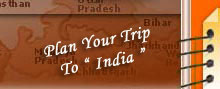 incredible india tours